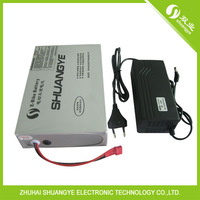 36V 10AH E-Bike Battery Electric Skateboards Battery with charger
