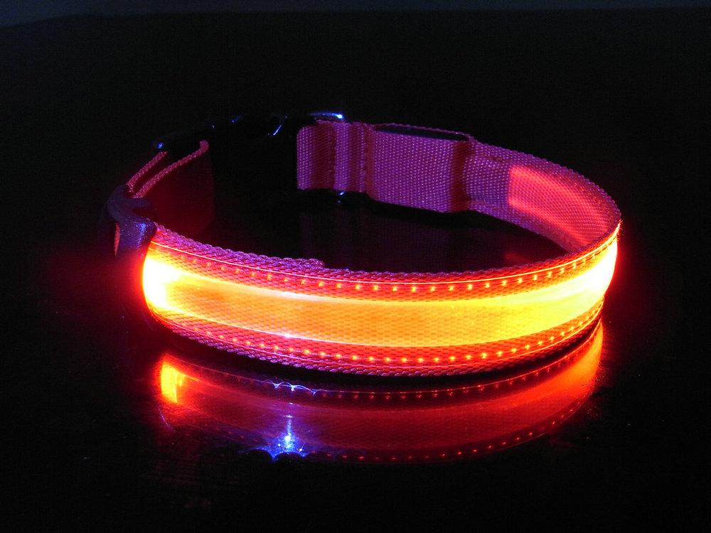 питомец собака безопасности LED воротник красный