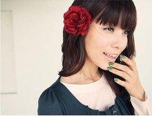 mesh hair clip promotion