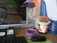8LED super bright Solar desk lamp AC+USB+Solar powered reading light for students 48pcs/lot Free shipping