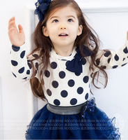 Kids Clothes 2 PCS Set T Shirt And Tutu Skirt For Girls 2014 New Dresses