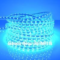 220V input LEDStrip 5050-60pcs/m 14LM