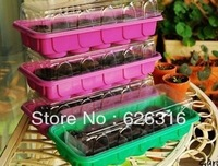 10 cells Plastic Transparent lid Seedling pot, 1 pot including of 10 nursery soil,for flower,fruit ,vegetable seed Seedling pot