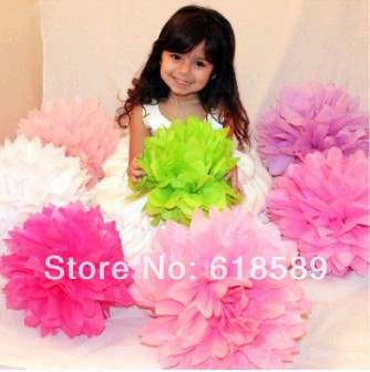 Free Shipping 15 pcs 25cm(10inch) Tissue Paper Pom Poms Wedding Party Decor Craft Paper Flower For Wedding Decoration(China (Mainland))