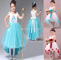 1PCS, New 2014 Frozen Elsa Anna Party Girls Clothing Cartoon Hello Kitty Princess Dresses Children tutu dress free shipping