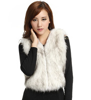 Stylish Collarless Faux Fur Casual/Party Vest(More Colors) free shipping