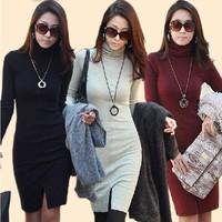 New Women's Autumn Winter Sexy Soft Seamless Stretch Long Sleeve Turtleneck Dress 3 Colors 3 Sizes 18475 SV16