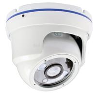 800TVL camera,video surveillance,camara de seguridad,Pixel plus1099 CMOS,3.6mm 1MP lens,ICR, infrared 30m,vandalproof, wholesale