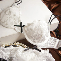 2014 women's sexy underwear lace embraidery Ultra-thin transparent bra set brassiere set D cup free shipping R039