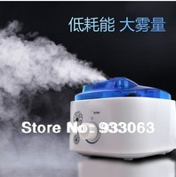 Free shipping High quality Air Purification Humidifier ultrasonic mini mute Equipment household Diffuser For Home Office Europe