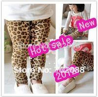 Retail leopard leggings girls hot beautiful legging leopard print