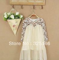 Fashion Girl Spring Hollow Lace Chiffon Dress Kids Chiffon Princess Dress 5pcs/lot Free Shipping